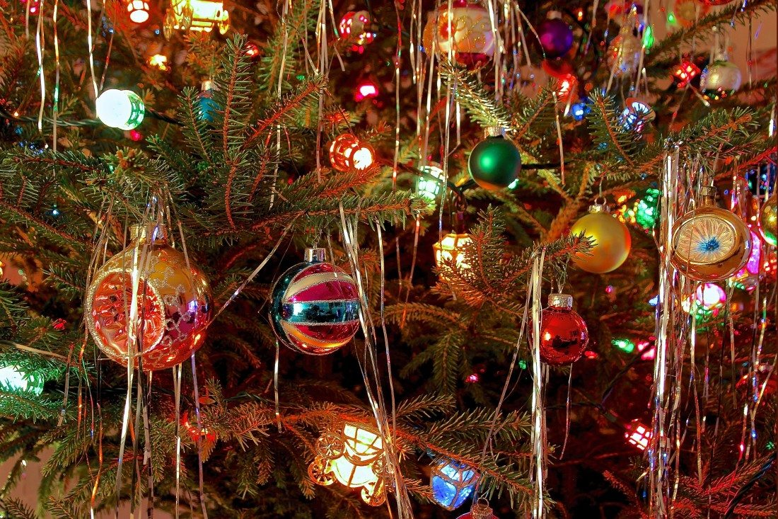 Decorated Christmas Trees Party