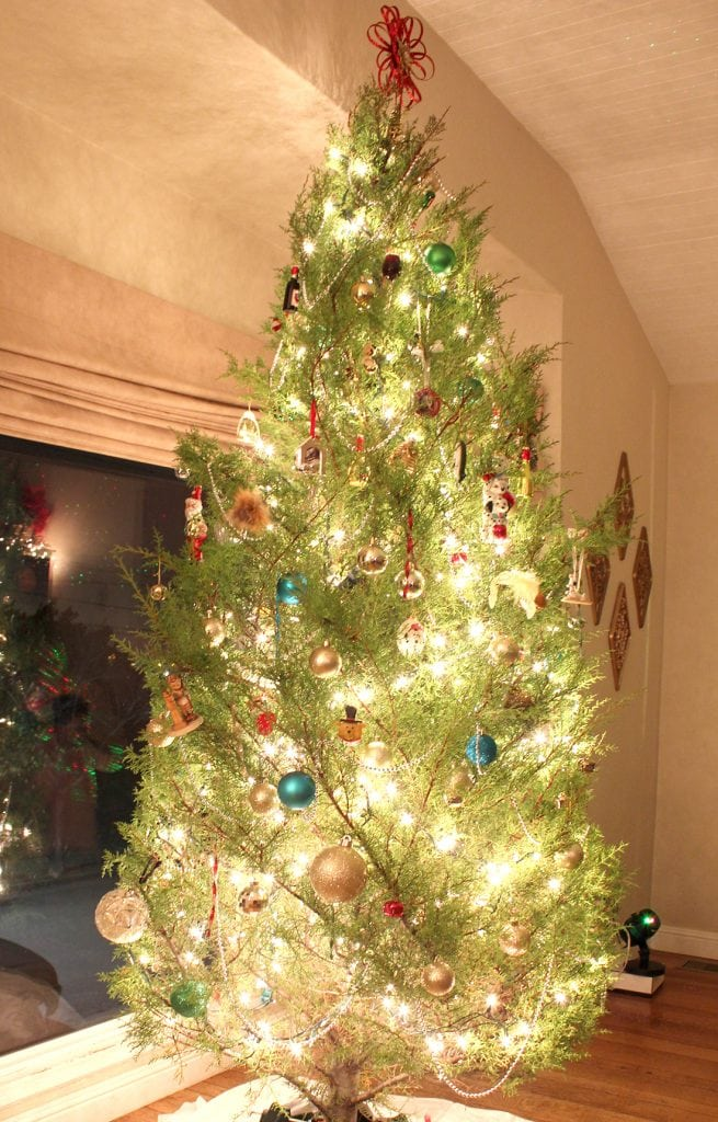 Photography: EASY Nighttime Christmas Tree Photos with DSLR