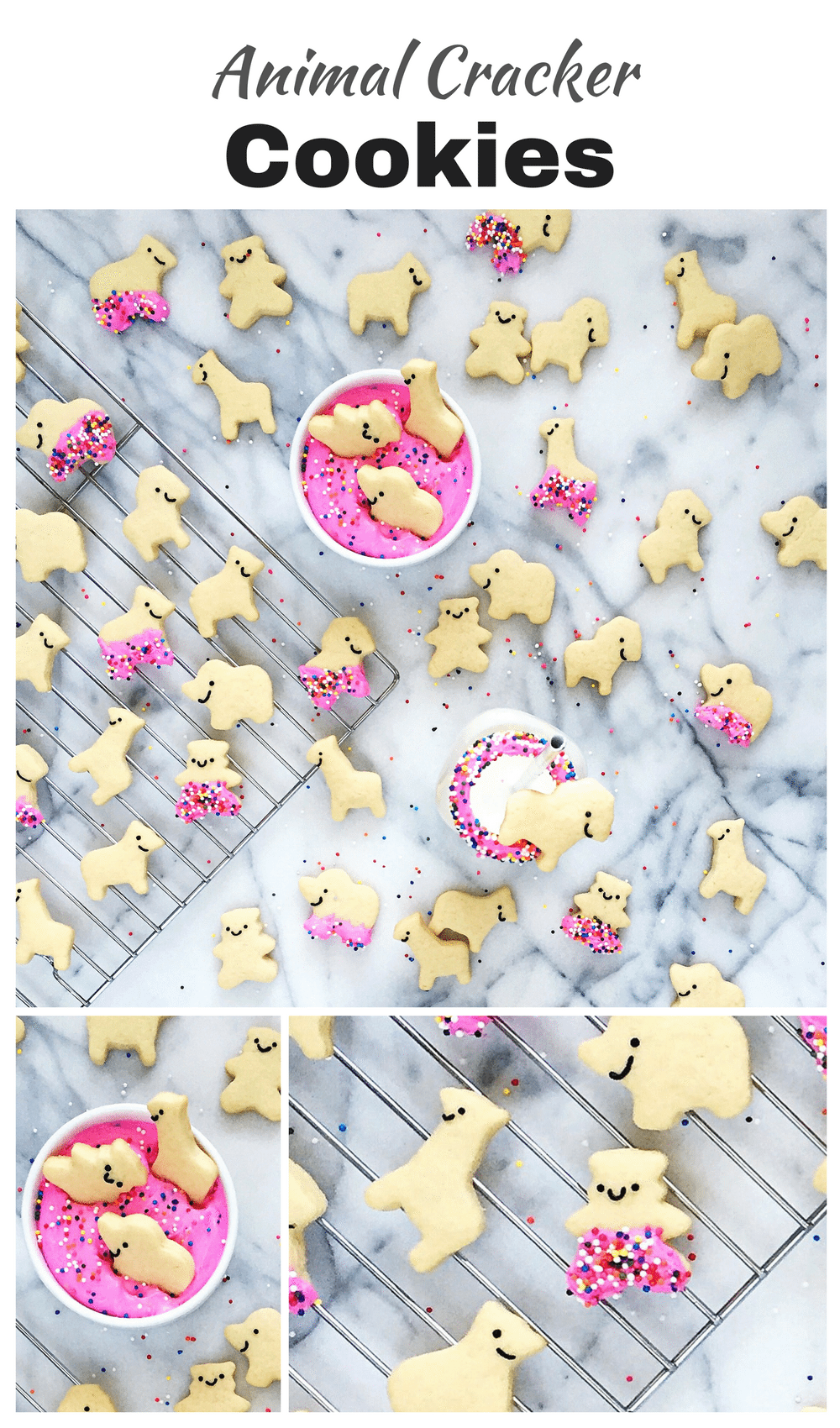Party Animal Crackers Food Design